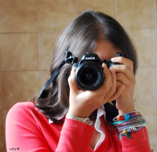 Lely©